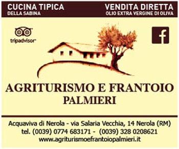 Vendita diretta in frantoio di olio Exravergine di Oliva: dal cuore della Sabina a Nerola
