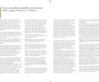 Locandina: Raffaello e Giovanni da Udine nella Loggia di Amore e Psiche