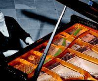 Locandina: Torna a Roma la pianista russa Lylia Zilberstein