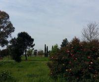 Locandina: Il Parco di Centocelle