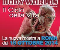 Locandina: Body Worlds