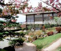 Locandina: Visite gratuite al Giardino dell'Istituto Giapponese