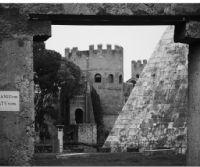 Locandina: Visita guidata al Cimitero Acattolico di Testaccio