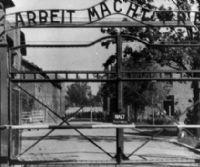 Locandina: I violini di Auschwitz