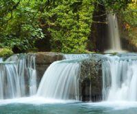Locandina: La natura in scena, dal cuore al sensore