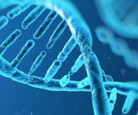 Locandina: DNA. Il grande libro della vita da Mendel al genoma