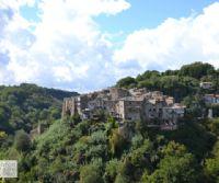 Locandina: Colori e profumi lungo il Treja