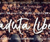 Locandina: Caduta libera