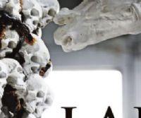Locandina: Lapidarium
