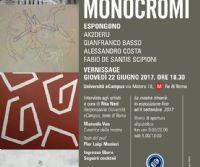 Locandina: Quasi Monocromi