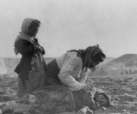 Locandina: Centenario del genocidio degli Armeni. 1915 - 2015
