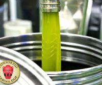 Locandina: Annata a 5 stelle per l'olio extra vergine Sabina DOP