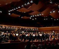 Locandina: Domenica in Musica