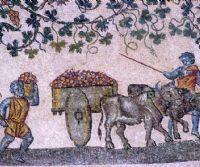 Locandina: Il complesso di Sant'Agnese fuori le mura e il mausoleo di Santa Costanza
