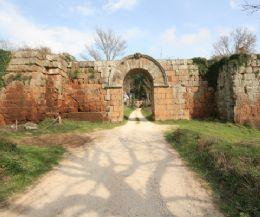 Locandina: Domenica 29 settembre due appuntamenti dentro e fuori il Parco del Treja