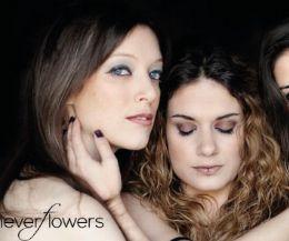 Locandina: Neverflowers: i fiori che non esistono