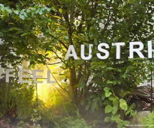 Locandina: Austria Turismo: arrivare e rinascere nel Bosco Culturale itinerante