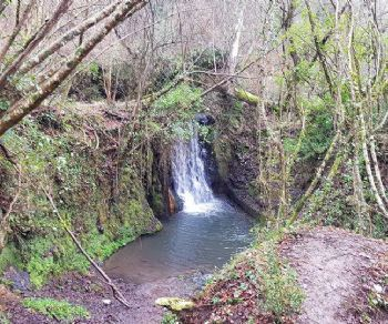 Visite guidate - Parco di Veio: le cascate, la mola, le poesie