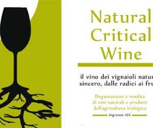 Locandina evento: Natural Critical Wine