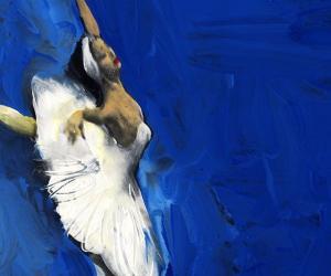 Locandina: Il lago dei cigni
