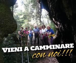 Locandina: Camminare nella Pineta di Castelfusano