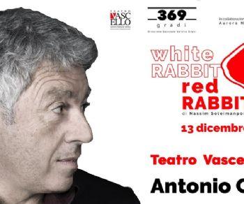 Spettacoli - White rabbit red rabbit (coniglio bianco coniglio rosso)