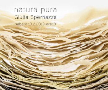 Gallerie - Natura pura