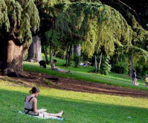 Locandina: Meditazione al parco