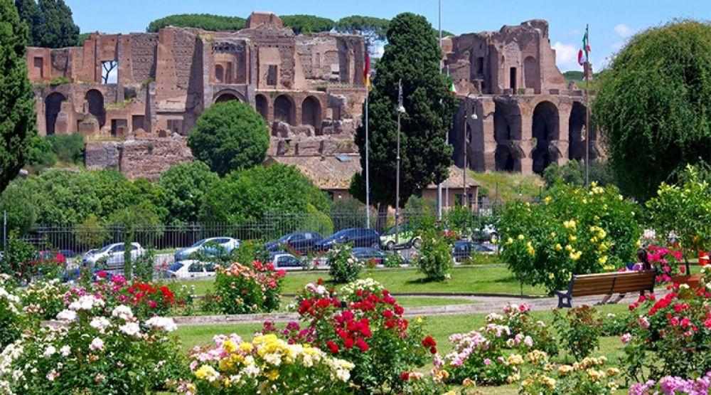 Concorso rose roseto comunale rassegne a roma evento for Hotel mille rose roma