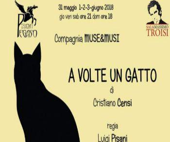 Locandina evento: A volte un gatto
