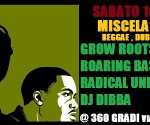 Reggae, dub, hip hop dancehall