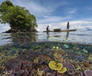 National Geographic Italia dedica questa mostra alla enciclica del Pontefice sulla Terra