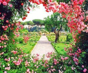 Visite guidate - Il Roseto Comunale di Roma