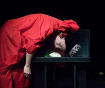 Spettacoli - XIII edizione Short Theatre 2018