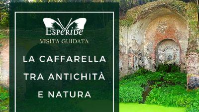 Visite guidate - La Caffarella tra antichità e natura