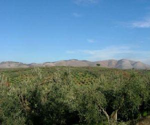 """Visite guidate: Il """"foliage"""" sul monte degli Elci e la fiera agroalimentare di Farfa"""