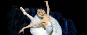 Altri eventi: Il lago dei cigni Teatro dell'Opera dal 17 novembre al 2 dicembre 2009