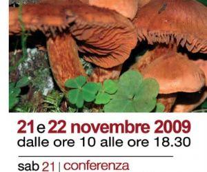 """Altri eventi: VIII mostra micologica """"I funghi e il bosco"""" Roma – 21 e 22 novembre 2009"""