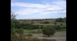 Altri eventi: Passeggiate, feste e giochi al Parco della Caffarella fino al 28 febbraio 2010