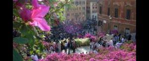 Altri eventi: 73a mostra delle azalee capitoline a Piazza di Spagna