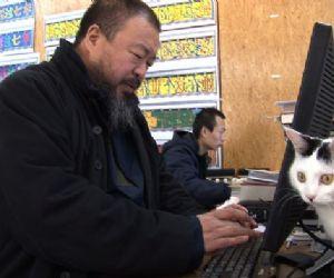 Spettacoli: L'incredibile storia di Ai Weiwei arriva al Teatro Ambra alla Garbatella