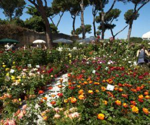 Fiere: I Casali del Pino ospitano la  4° edizione di FloraCult