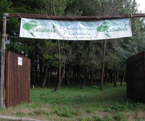 Fiere: Una iniziativa promossa dal Comitato Promotore del Parco della Cellulosa insieme a numerose Associazioni territoriali