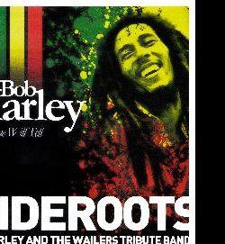 Concerti - Concerto degli OndeRoots, una delle più antiche cover/tribute band di Bob Marley