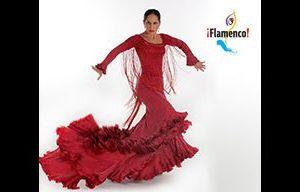 Festival: I grandi interpreti del Flamenco contemporaneo all'Auditorium Parco della Musica