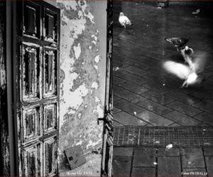 """Mostre: """"I non luoghi"""" in mostra alla libreria Mondadori di Monterotondo dal 16 ottobre"""