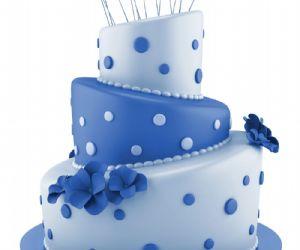 Altri eventi - Castel Romano Designer Outlet festeggia il suo 10° compleanno con una torta alta 5 metri