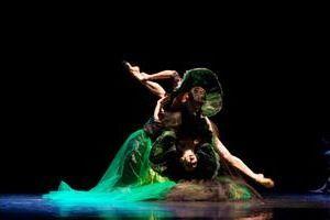"""Spettacoli - Nelle serate dal 24 al 27 Ottobre 2013, il Balletto di Roma è ospite del Teatro Vascello con il nuovo programma coreografico """"The Quartet"""""""