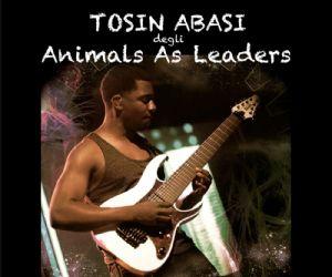 Concerti - Chitarrista progressive metal statunitense attualmente nella formazione degli Animals As Leaders