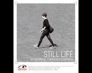 Mostre - Still life